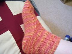 Parasol Sock #1