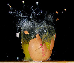 Eggsplosion (Mark Watson (kalimistuk)) Tags: make speed lumix still mess shoot egg panasonic freeze messy smashed broke explode highspeed splat exploded fz50 strobes froze 22cal diamondclassphotographer flickrdiamond