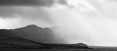 To be free in Scotland (Premysl Fojtu) Tags: bird minimalistic weather rain light scotland north mountains horizon kyleoftongue sutherland freedom blackandwhite bw monochrome canon landscape waterscape coast