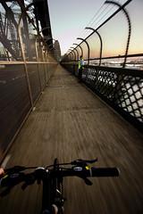 Bridge security