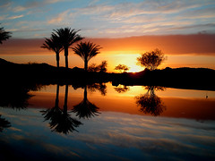 This Side Up (oybay) Tags: blue trees sunset red orange sun color reflection tree water colors yellow clouds mirror pond bravo cloudy palm palmtrees mirrored fireinthesky magicdonkey abigfave goldenphotographer favemegroup9 bratanesque seasunclouds