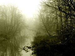 Drift (curious_spider) Tags: mist reflection water fog sepia spring stream pennsylvania gray chilly buckscounty drifting quakertown diamondclassphotographer flickrdiamond superhearts