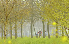 Father (Harry Mijland) Tags: holland spring nederland lente amsterdamrijnkanaal maarssen dearharry harrymijland
