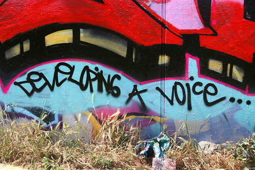 "multicolored graffiti that reads, ""Developing a voice"""