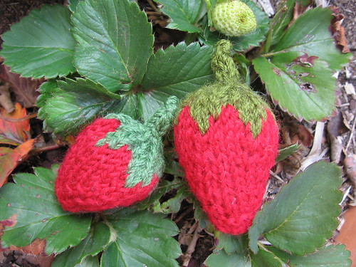 knitted strawberries