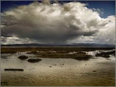 storm approaching (jody9) Tags: sky topf25 washington stormy leadbetterbeach naturesfinest abigfave anawesomeshot superaplus aplusphoto