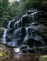 Blue Mountain waterfall (Yer Man) Tags: waterfall nikon australia bluemountains velvia f80