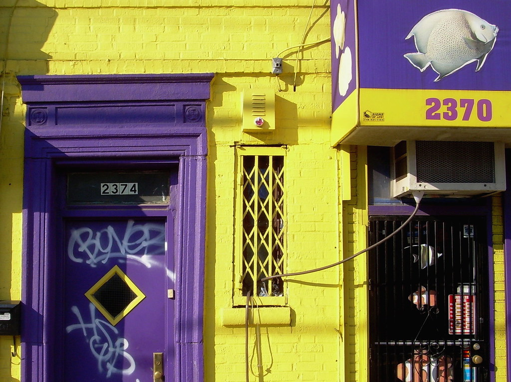purple door, flatbush