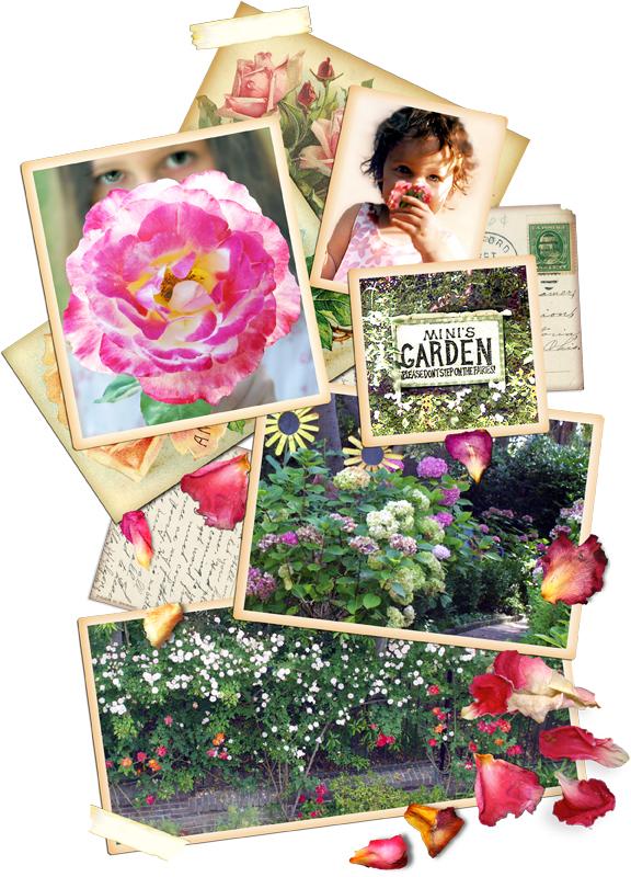 mini's garden