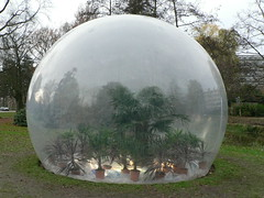 greenhouse bubble