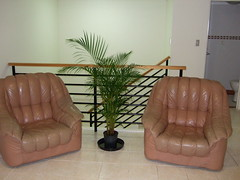 My two sofa chairs
