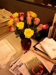 Flowers from Britt