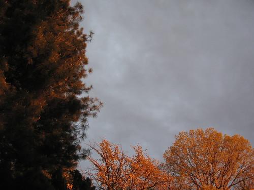Landscape of Sky