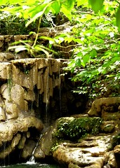 Fountain of Youth (LaMadrileña) Tags: green water mexico waterfall yucatan palenque archeology
