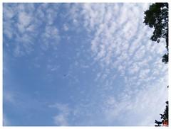 Today's Photo 070512 #05