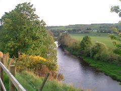 The Clyde (Elizmar) Tags: nature river scotland riverclyde countryside carluke clydevalley clydewalkway