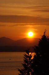 Tonight's Sunset (libraryman) Tags: seattle sunset orange mountains tree water sailboat boat evergreen sound sail pnw puget