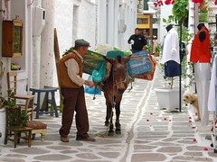 Old times (teo58-) Tags: life people island store donkey greece paros greengrocer parikia instantfave 25faves abigfave superaplus aplusphoto