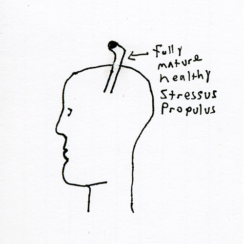 stressus_propulus_healthy