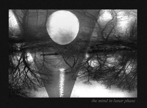 The Mind in Lunar Phase.Nellie Vin.