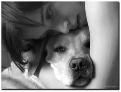 Sweet Love ~ Feliz Cumple Ona! (Bogaugon) Tags: portrait bw woman dog pet love byn mujer labrador amor retriever perro explore ona mascota pola cez supershot 10faves abigfave ltytr1 superlativas