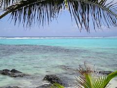 Azure waters (~ ҽʍҍҽɾ ƒɑɾìղɑ ~) Tags: fish beach water coral swim coconut turquoise azure lagoon tropic samoa reef tranquil