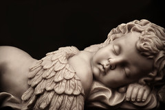 Der Traum (kwiat) Tags: sleeping sepia angel wings child kind putte schlafend engel schlafen coolest schlaf putto flgel cotcpersonalfavorite impressedbeauty