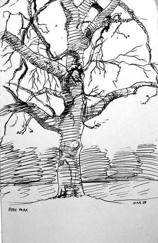 moleskine sketch, tree in hyde park London
