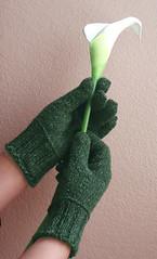 vihreät hanskat 3