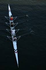 Rowing (Chiswick, United Kingdom) Photo