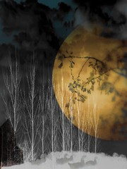 The Summer Moon Illusion (~ Hypatia ~) Tags: trees moon house fog clouds geese bravo moonillusion summermoon