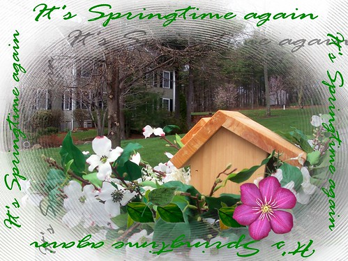 It's Springtime again