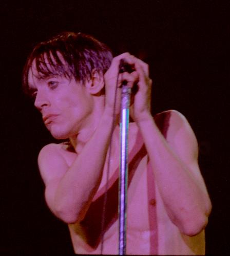 Iggy Pop 1977 1