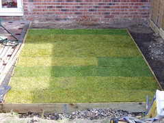 Home Improvements (Part 5) - And a lawn too.