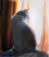 Cat at Window (Kofte) (HagitSha) Tags: shadow pet cats art window cat painting artist curtain kitty kitties  oilpainting