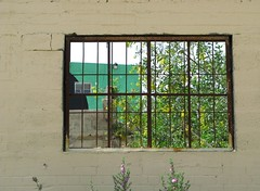 Window on the Wall (ellla) Tags: flowers windows green abandoned yellow wall canon israel telaviv industrial decay center a710is diamondclassphotographer flickrdiamond 3ii