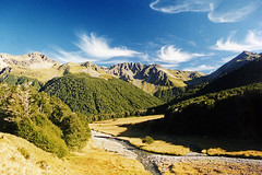 North Esk Valley (Daniel Murray (southnz)) Tags: morning newzealand sky clouds forest trekking river landscape scenery stream hiking nz southisland tramping beech cirrus southnz lakesumnerforestpark eos50escanfromprint