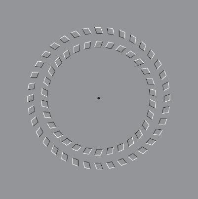 efecto circulos concentricos animados