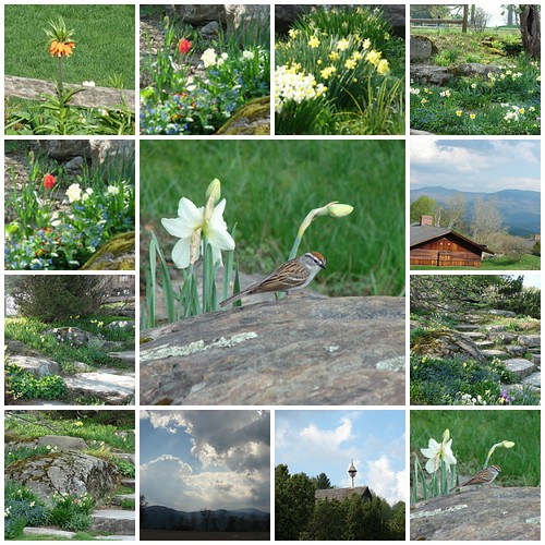 The Von Trapp family lodge Vermont