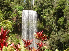 Milla Milla Falls2