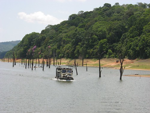 Boat ride in Periyar Lake