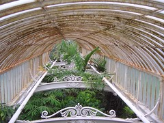 kew_palm_house3377
