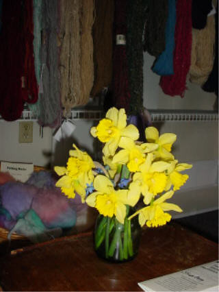 Spring Flowers to brighten a dreary day!