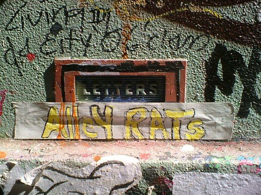 alley rats