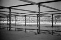 0510.25 (L. Barton) Tags: bw leipzig sachsen museumoffinearts fassade steelframe architekture fujiacross100 bildermuseum museumfrbildendekunst