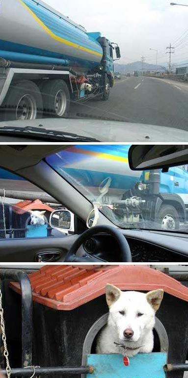 وسائل النقل ............. تشاهدوها 464585141_14465e7b16_o.jpg