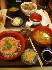 Gyudon and Salmon Rice