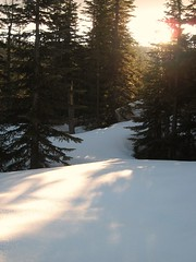 Late Afternoon Sun on the Snow
