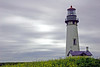 Lighthouse (Cal Bear 94) Tags: lighthouse oregon pacific foggy newport yellowflowers prettyflowers pacificcoastline aplusphoto