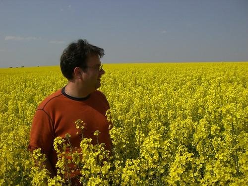Adam in a Rapseed Field